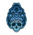 gorilla skull vector image
