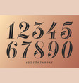 numbers font classical elegant font vector image vector image