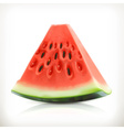Slice of watermelon summer fruit icon vector image vector image