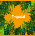 summer tropical card with leaves cartoon style vector image vector image