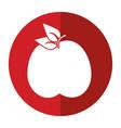 tasty apple natural food shadow vector image vector image