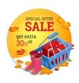 Autumn sale banner Autumn sale flayer Design for vector image vector image