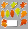 colorful set of stickers autumn leaves vector image vector image
