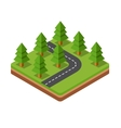 Isometric trees on road vector image vector image