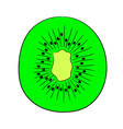 sliced kiwi fruit halves on white background vector image vector image