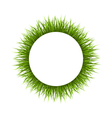 Frame with green grass Floral nature background vector image