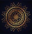 golden mandala decorative icon vector image