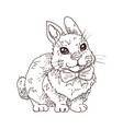hand drawn funny rabbit vector image