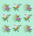 plants and flowers for background flat vector image vector image