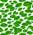 realistic green leaves isolated texture seamless vector image