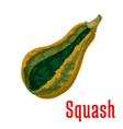 Ripe squash vegetable icon cartoon style vector image vector image