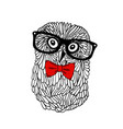cute owl pet in retro frame glasses isolated on vector image