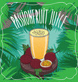 fresh passion fruit or passionfruit juice vector image vector image