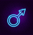 male gender neon sign vector image