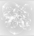 realistic bulbs vector image vector image