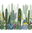 seamless pattern with cactus agave and opuntia vector image vector image