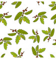 seamless pattern with oak tree branches vector image vector image