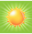 Sun With Sunburst And Rays vector image vector image