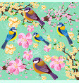 blossom cherry flowers branch and birds pattern vector image vector image