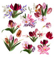 collection realistic pastel flowers vector image vector image