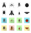 design insect and fly logo set of vector image vector image