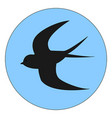 flying swallow on white background vector image vector image