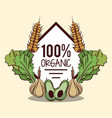 fresh organic vegetables vector image vector image