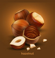 hazelnuts on a brown background 3d high vector image vector image