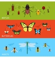 Insects banner set vector image