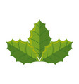 leafs christmas decoration icon vector image