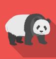 panda a bamboo bear panda a rare species of vector image vector image