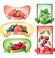 berries labels vector image