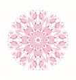 circular floral pattern vector image vector image