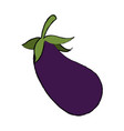 eggplant vegetable nutrition food diet vector image vector image