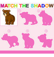 find the correct shadow of the bear vector image