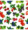 forest berries and fruits seamless pattern vector image vector image