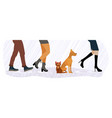 homeless cat and dog between feet vector image vector image