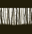horizontal with many pine trees vector image vector image