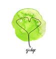 leaf gingko tree vector image vector image