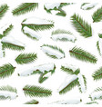winter pine branches seamless pattern vector image vector image