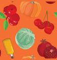 cranberry pumpkin cabbage oil pomegranate vector image vector image