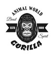 gorilla head black emblem isolated on white vector image vector image