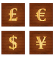 money signs vector image