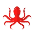 Octopus flat vector image vector image