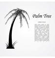 silhouette palm tree vector image vector image