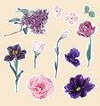 spring flower stickers vector image