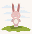 white background with color scene cute rabbit vector image vector image