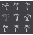 black palm icons set vector image vector image