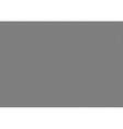 gray hexagonal texture vector image vector image