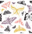 hand drawn butterflies seamless pattern high vector image